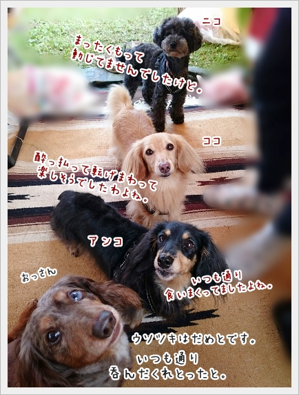 fc2_2016-10-11_02.jpg