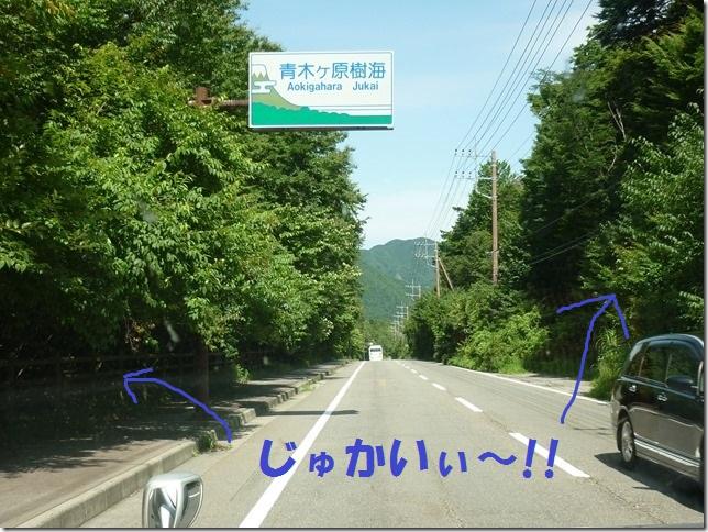 201608山梨旅03-17