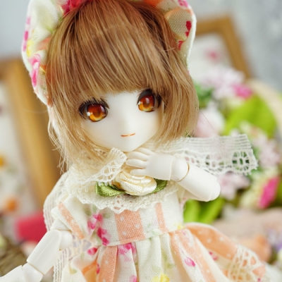 12-snowchamomile-012-b.jpg