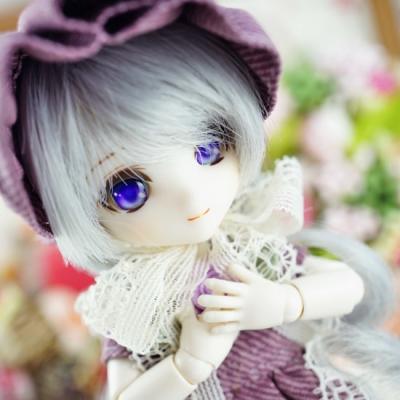 12-snowchamomile-015-b.jpg