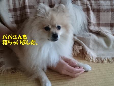 20160919a_1.jpg