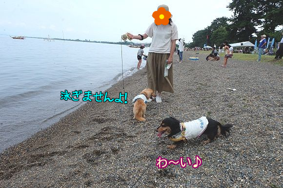20160727002222a92.png