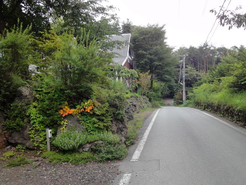 Jogging_160716-1.jpg