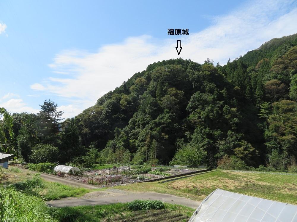 fukuharaj (1)