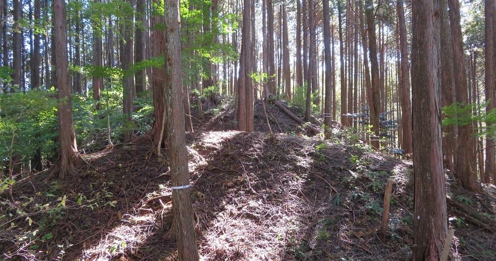urusihara (11)
