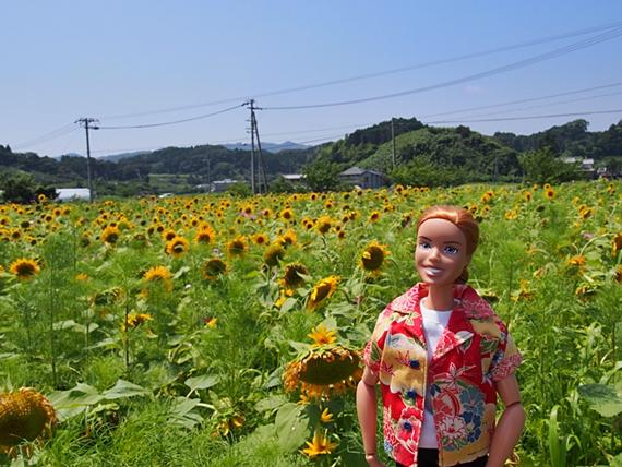 himawari-20160718-12s.jpg