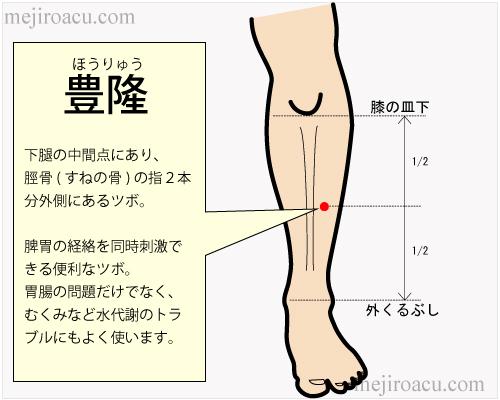 東洋医学の「脾」とは?(3)脾のツボ - 目白鍼灸&目白漢方日記