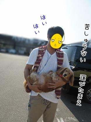 kinako5541.jpg
