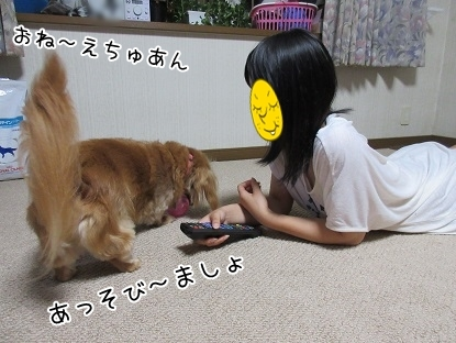 kinako5614.jpg