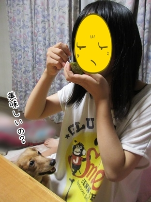 kinako5620.jpg