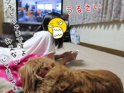 kinako5645.jpg