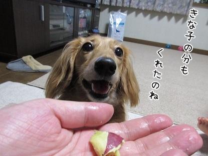 kinako5679.jpg