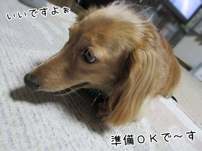 kinako5696.jpg