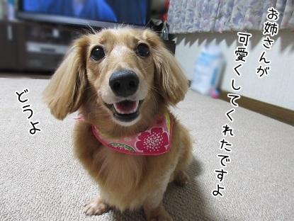 kinako5773.jpg
