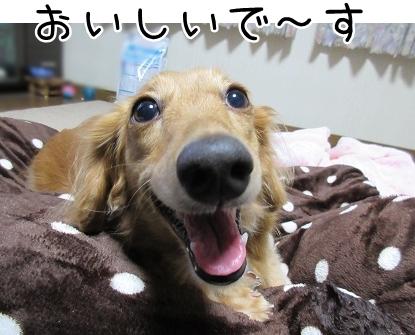 kinako5802.jpg