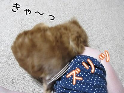 kinako5806.jpg