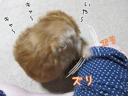 kinako5807.jpg