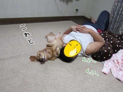 kinako5814.jpg