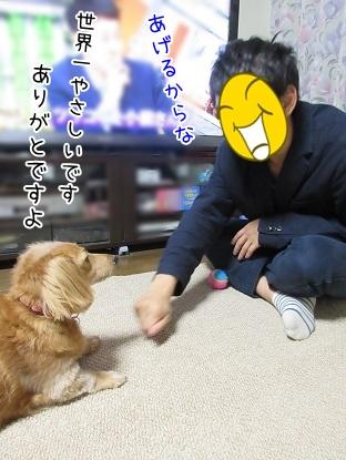 kinako5897.jpg