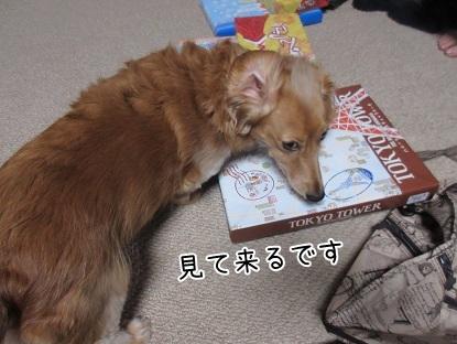kinako5941.jpg