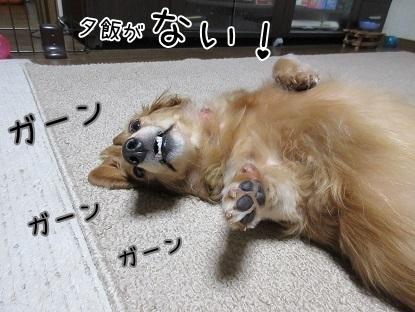kinako5993.jpg