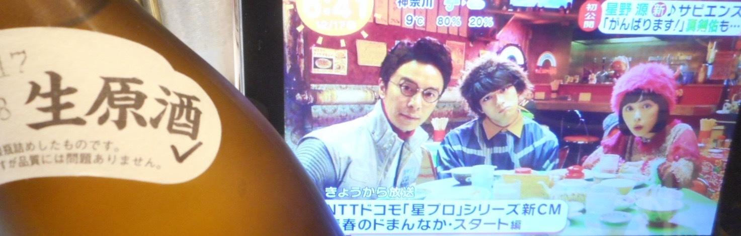 kurosawa_type9_29by3_3.jpg