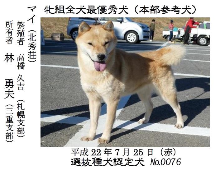 20181104-01-道犬牝最優秀犬マイ