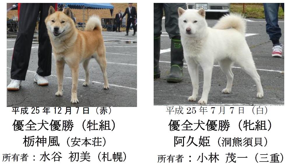 20181104-03-道犬優全犬優勝