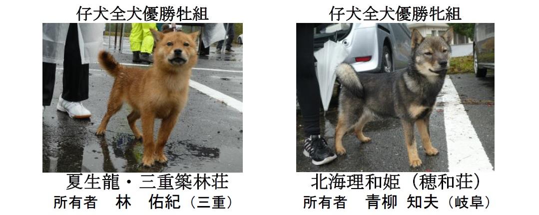 20181104-06-道犬仔犬全犬優勝