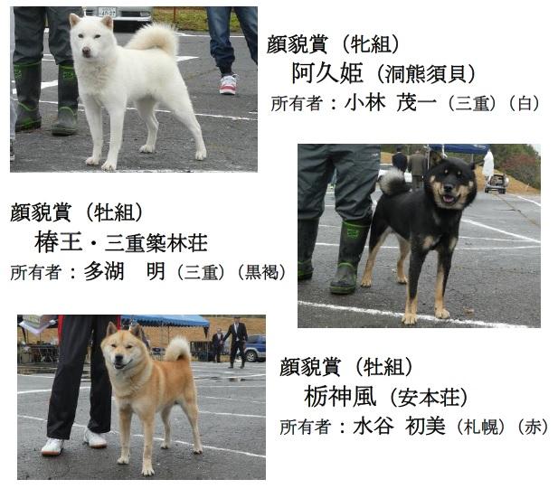 20181104-07-道犬顔貌賞