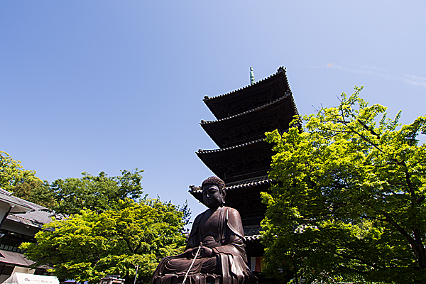 五重塔と大仏