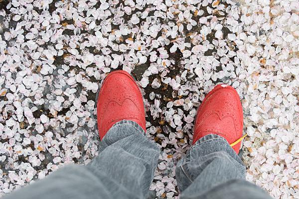 花びらと雨靴