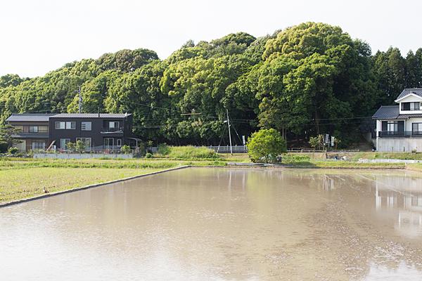 石作神社全景