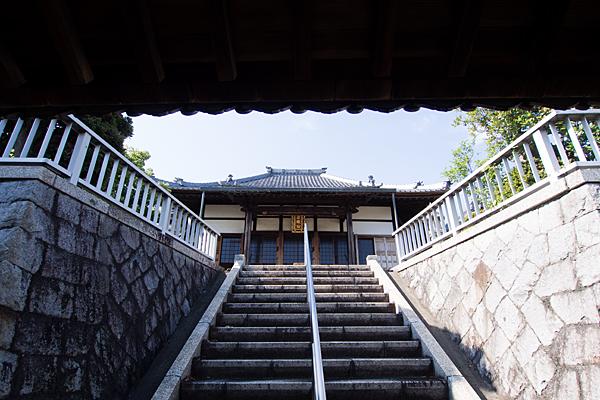 階段下から本堂を見上げる