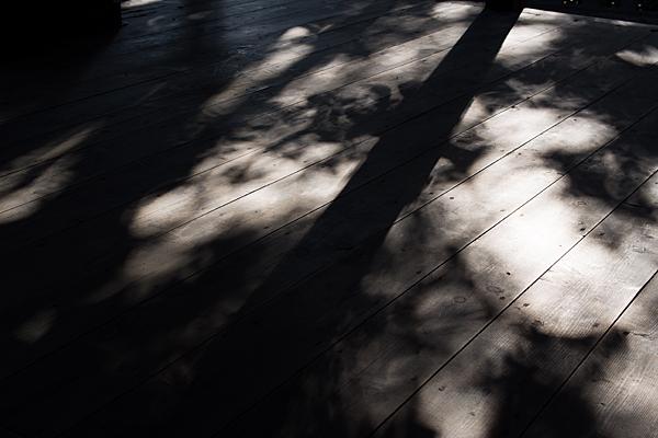 板貼りの光と影