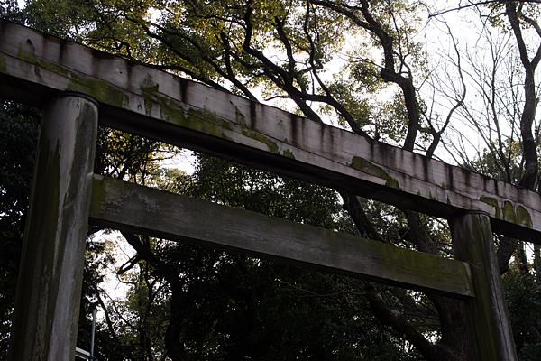 木の神宮鳥居