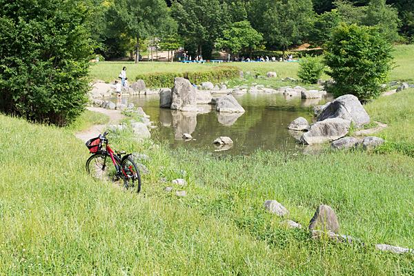 小川の流れと少年の自転車