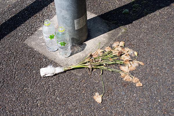 枯れた供え花