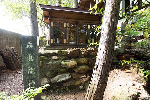 森眞龍神社