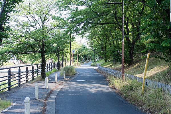植田川沿い風景