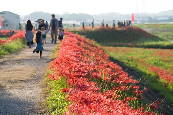 矢勝川のつどう人々