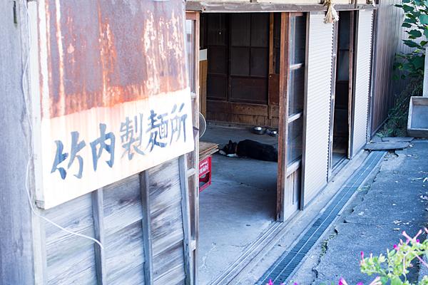 竹内製麺所と犬