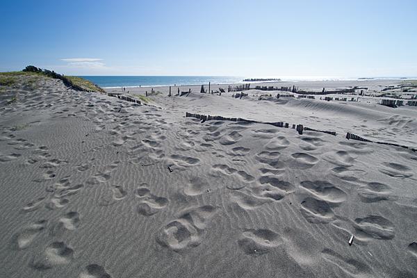 砂丘と足跡