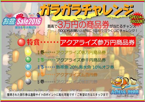 20160810215021050.jpg