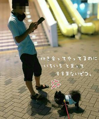 t2pix_20160725-215939.jpg