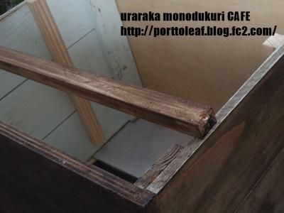 IMGP0691.jpg