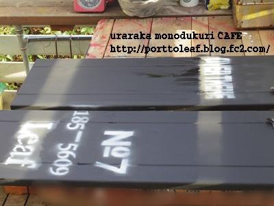 IMGP9945.jpg
