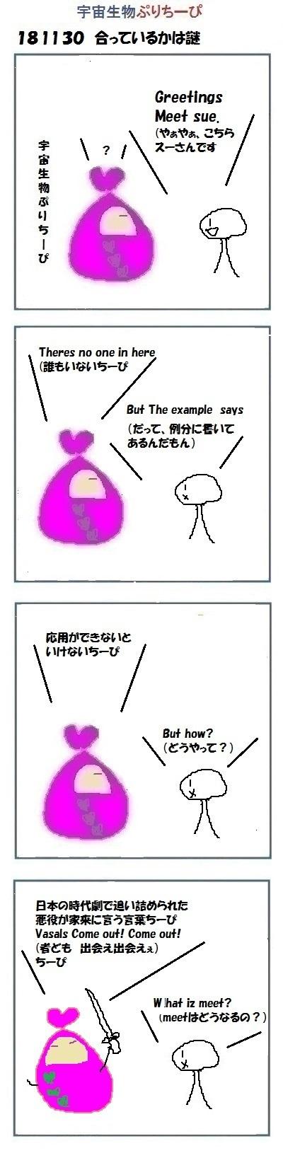 181130pry_e