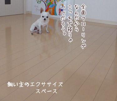 s-1607037 copy