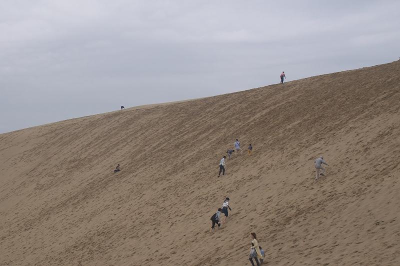 鳥取砂丘 2